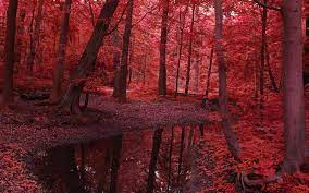 Free download Fall Leaf Tree Autumn Red ...