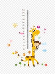 Giraffe Cartoon Png Download 800 1201 Free Transparent