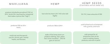 Hemp Uses Chart Hemp Vs Cbd Silvara