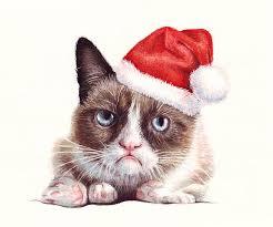 grumpy cat christmas hat. Perfect Grumpy Grumpy Painting  Cat As Santa By Olga Shvartsur In Christmas Hat R