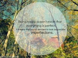 Quotes About Imperfection Simple Imperfection Quotes