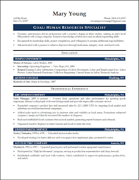Resume Samples For Experienced Hr Professionals Refrence Hr