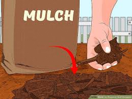how to prevent soil erosion steps pictures wikihow image titled prevent soil erosion step 2