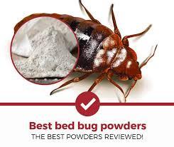 29+ Stuff To Kill Bed Bugs Pics