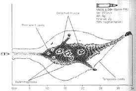 223 Vs 556 Ballistics Chart 5 56 X 45mm Nato Wikipedia