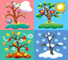 Image result for 4 seasons clipart