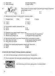 Kumpulan soal uas/pas pai (pendidikan agama islam) kelas 1, 2, 3, 4, 5, dan 6. Soal Latihan Ipa Kelas 6 Ilmusosial Id