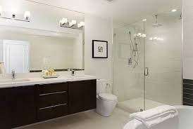 Glass Bathroom Cabinets Bathroom Design Ideas Amazing Contemporary Black Finish