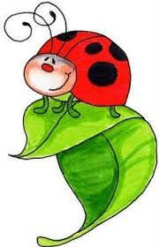 bug clipart png. garden bug clipart - google search png