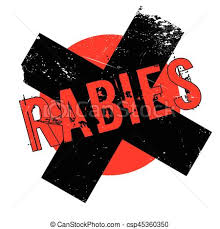 Image result for Rabies Free