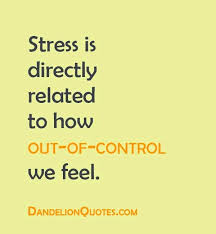 Life Stress Quotes Gorgeous Holiday Stress Funny Quotes Awesome Download Life Stress Quotes