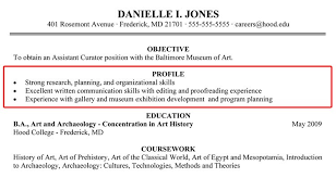 Resume Profile Samples Custom Profile Examples For Resumes Kenicandlecomfortzone