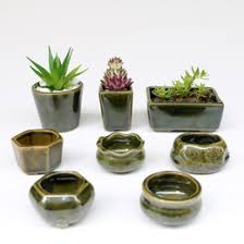 small office plant. Discount Small Office Plants - 8pc Set Simple Shape Flower Pot For Succulents Fleshy Flowerpot Plant K