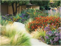 Small Picture waterwise landscape from webidiggreenacrescom Xeriscape and