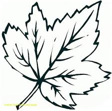 maple leaf coloring page 5459 and pages of leaves