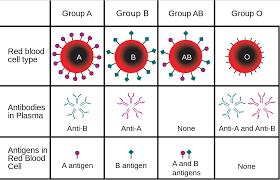 Alimentatia pe grupe de sange