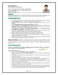 muhammad ali finance professional gulf resume