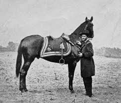 「battle of the wilderness horse soldiers」の画像検索結果
