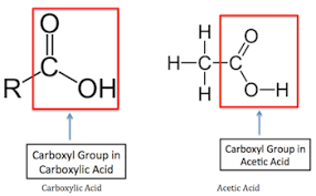 ch3co2h what is acetic acid uses structure formula video