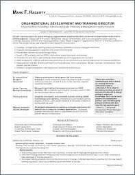 Portfolio For Resume New Skills To Put On A Resume Elegant What To Put For Skills On Resume