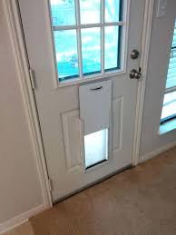 diy cat door for window build an improved cat door you know nothing snow diy cat