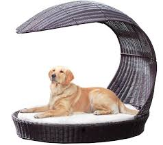image of outdoor dog lounge chair for large dogs