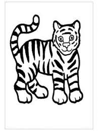 Small Picture beatiful tiger coloring pages for preschool Tiger Coloring Pages