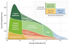Ecosystem Pyramid Chart Ecosystem Analysis Bioninja