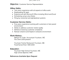 Sample Resume With Skills Section How To List Computer On Basic Enchanting How To List Computer Skills On Resume
