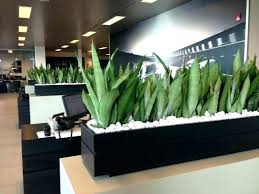 office planter boxes. Rectangular Planter Box Indoor Cool  Planters Office Boxes