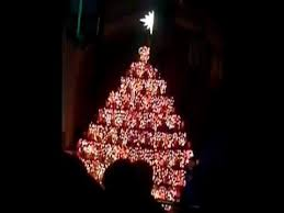 36 Best Christmas Under The Sea Images On Pinterest  Under The The Living Christmas Tree Knoxville Tn