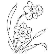 Top 35 Free Printable Flowers Coloring Pages Online
