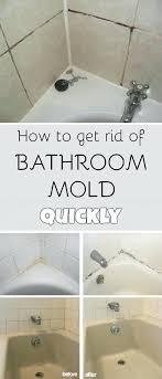 bathtub bathtub grout cleaner homemade bathtub grout cleaner