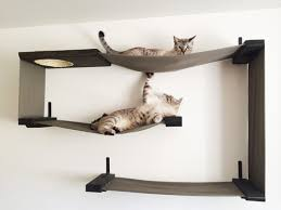 wall mounted cat climbing systems are the latest innovation in cat furniture wall based cat shelves are a great space saving option for apartment dwellers