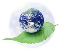 Resultado de imagen de la paz y la armonia en la tierra