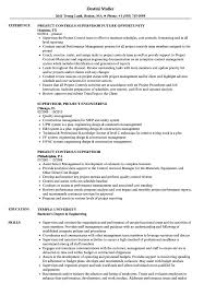 Project Controls Resume Examples Supervisor Project Resume Samples Velvet Jobs 58