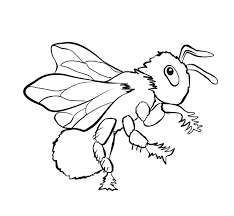 Small Picture Bug Museum Bug Coloring Pages Bee 1