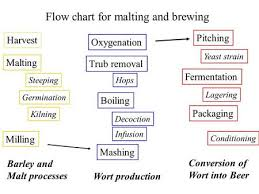 Brewing Science Malts And Grains Ppt Video Online Download