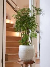Merin Designs Ter Steege Indoor Merin Pot Sand D 26 X H 26cm Gardenzzz