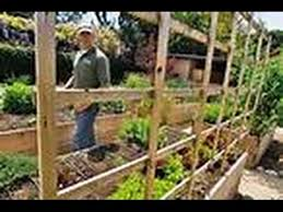 Backyard Farming Your Farm Image With Mesmerizing Backyard Farming Backyard Farming On An Acre
