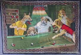 best picture of dogs playing pool 3