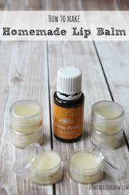 homemade lip balm recipe made with beeswax and shea