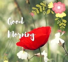 Amazing Image With Good Morning