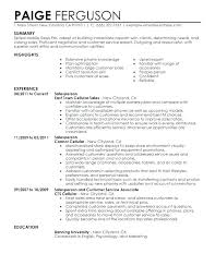 Sales Associate Resume Examples Inspiration Work Experience Resume Example Sales Associate And Resume Of Sales