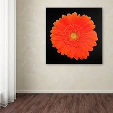 orange gerber daisy ready to hang canvas wall art target on gerber daisy canvas wall art with orange gerber daisy ready to hang canvas wall art target