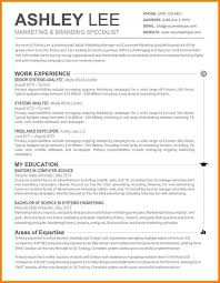 Word Resume Template Mac - Beni.algebra-Inc.co