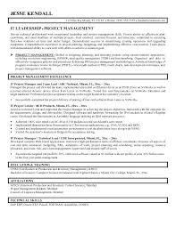 Junior Project Manager Resume Objective Letsdeliver Co