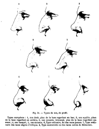 File Topinard Nasal Index Png Wikimedia Commons