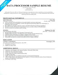 Data Processor Sample Resume