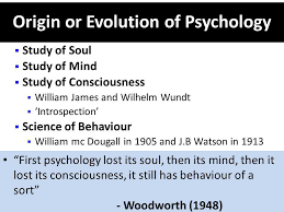 Application Essays   MBA   McCombs School of Business     case study examples psychology